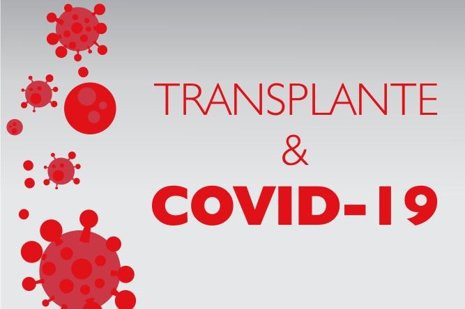 Transplante e Covid-19: Dúvidas Frequentes
